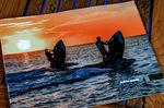 Video Vladivostok Boat Show X